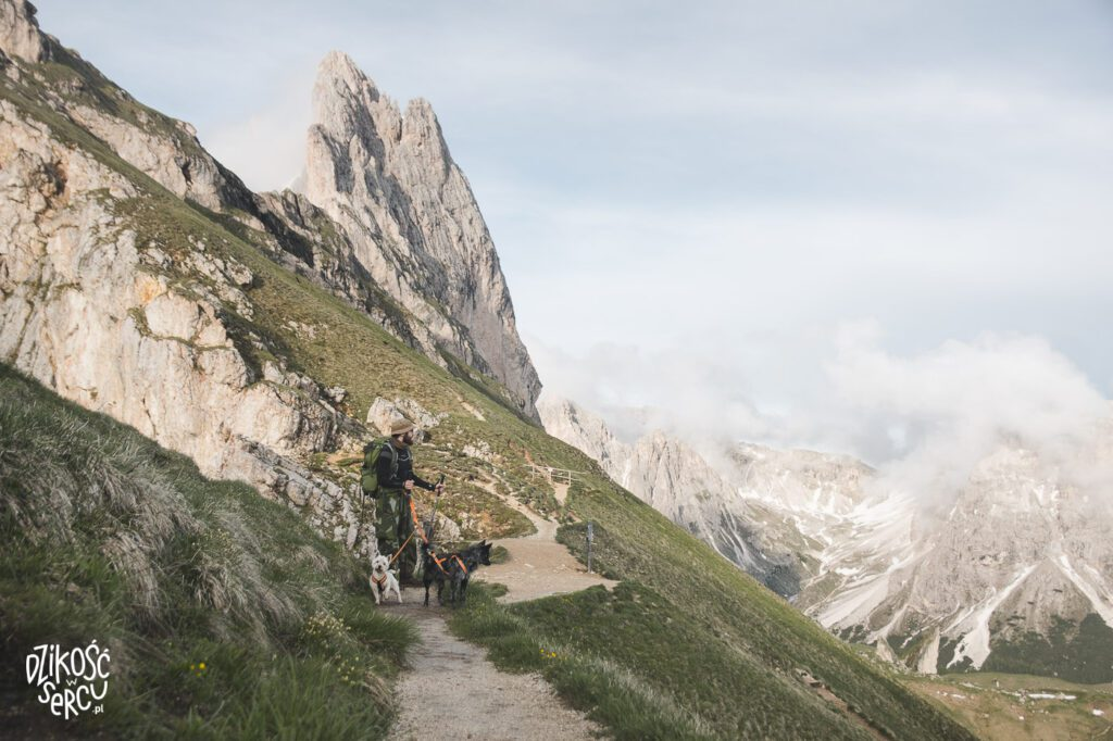 Dolomity z psem, Seceda, mężczyzna z psem podczas wędrówki po górach