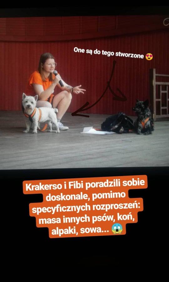 Prelekcja podczas Zwierzoo-Zdrój w Polanicy-Zdrój