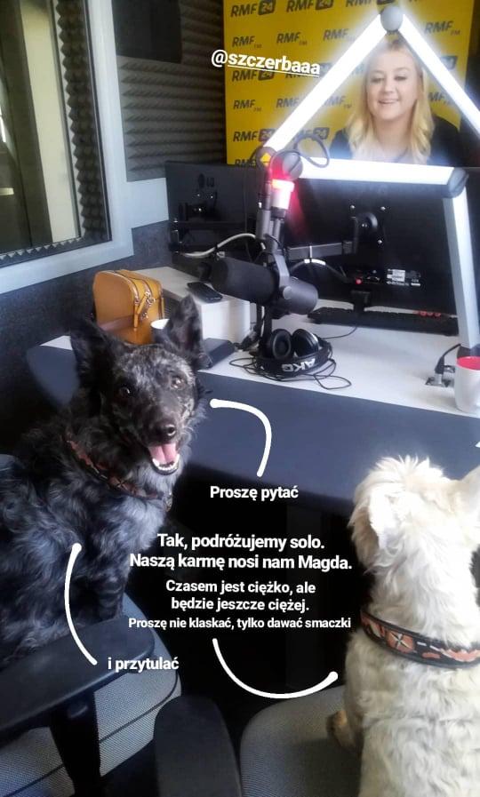 Dzikość w Sercu w Radio GRA