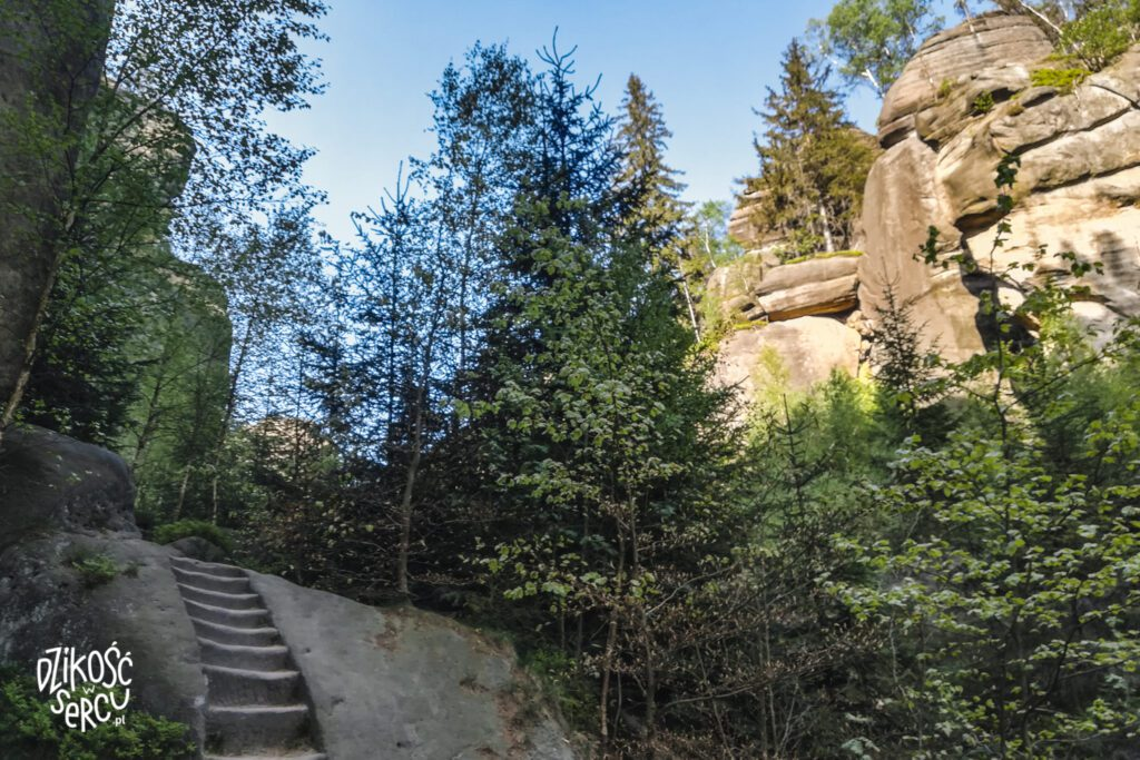 Broumovské stěny- Kovarova Rokle