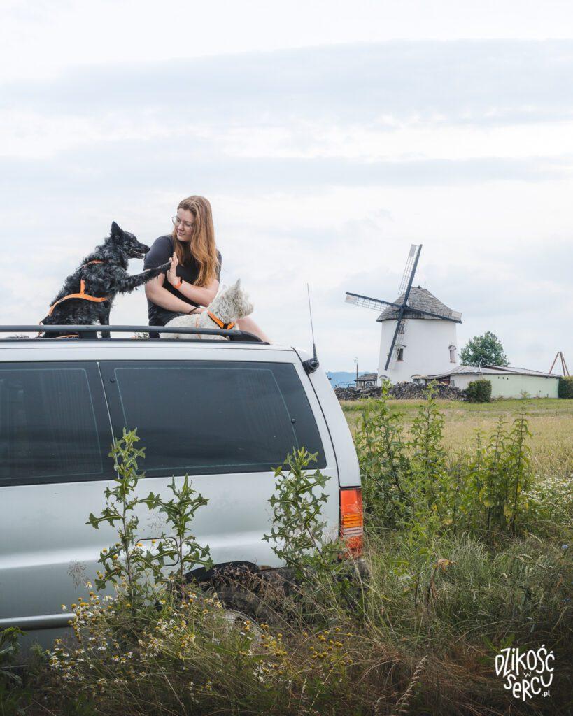 Łąka, napierwszym planie van, Magda, Fibi iKrakers siedzą najego dachu. Krakers przybija piątkę Magdzie. Wtle holenderski wiatrak.