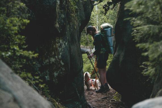 Góry Stołowe z psem, Park Narodowy, wędrówka z plecakiem